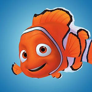 Participation creation finding nemo the clownfish for Clown fish nemo
